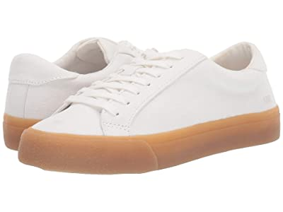 Madewell Sidewalk Low Top Sneakers (Pale Parchment Canvas) Women