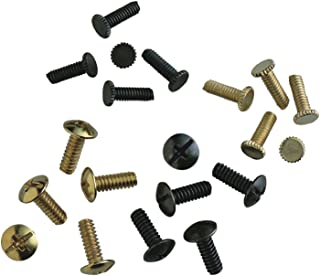 Westinghouse Lighting 7701600 Twenty Assorted Screws
