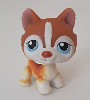 Husky #341 (Standing, White, Red Accents) Littlest Pet Shop (Retired) Collector Toy - LPS Collectible Replacement Single Figure - Loose (OOP Out of Package & Print)
