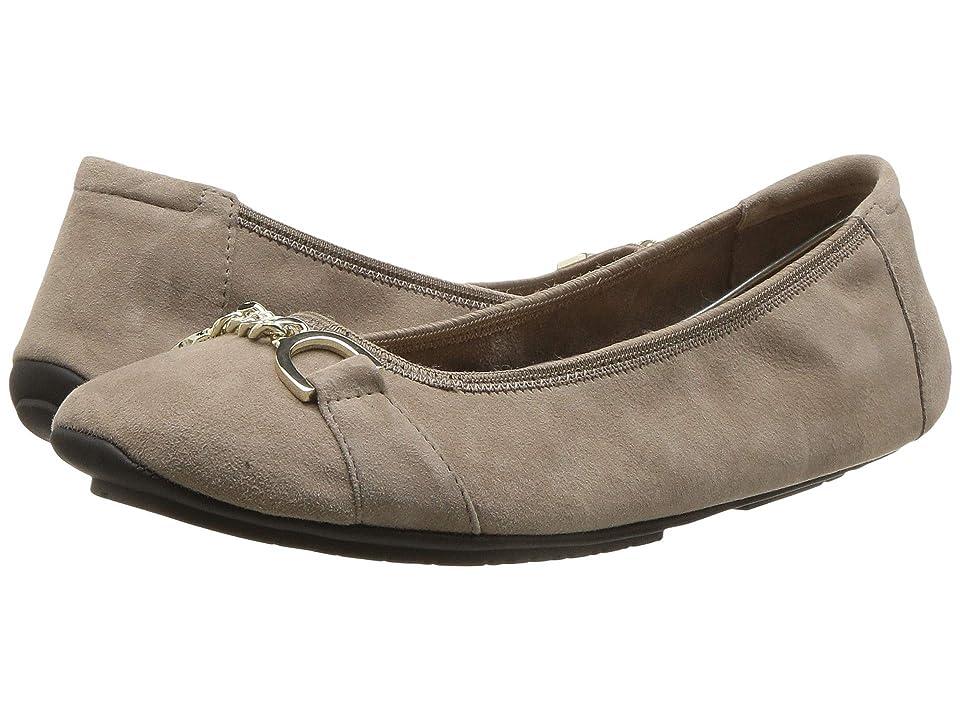 Me Too Brielle (Dark Camel Suede) High Heels