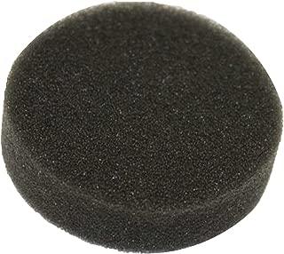 Genuine Kirby Vacuum Shampooer Tank Sponge Filter #307389 (Rug Renovator) (1)