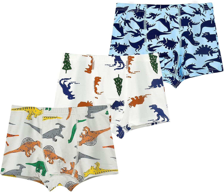 Little Boys Briefs Kids Dinosaur Truck Multipacks Training Pant for Baby Boy Toddler Soft Underwear Boxer Briefs