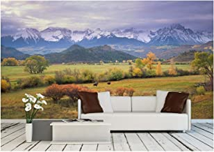 wall26 - on a Rare Overcast Morning in Southwest Colorado, a Rancher Rounds Up The Last Stray Cattle Just Before Daybreak. - Removable Wall Mural | Self-Adhesive Large Wallpaper - 100x144 inches