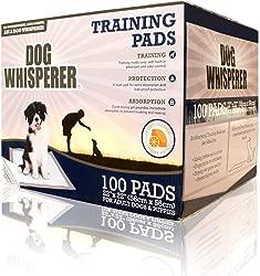 Dog Whisperer Ultra Absorbent Citrus Scented Dog Training Pads, 100 Count, White (Dog Training Pads Citrus)