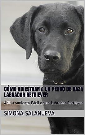 Amazon.es: Últimos 90 días - Mascotas / Hogar, manualidades ...