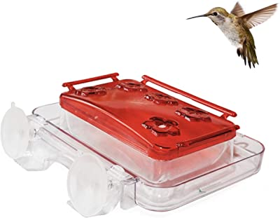 Cuboid - Insect-Proof Window Hummingbird Feeder, with Ant Moat, Bee Guards, Detachable Lid, Easy Cleaning & Refills, Bonus Chains for Hung on Tree Style, and Free Cleaning Brush, 8 oz