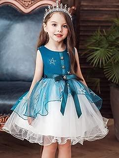 Luxury Princess Princess Dress Children Dress Tutu Dress Girls Star Satellite Network Yarn Button Decoration Butterfly Festival Dress ryq (Color : Green, Size : 140cm)