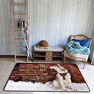 Non-Slip Carpet Alaskan Malamute Domestic Pet Grungy Brick Wall and Snow Pedigree Animal Friend Quick and Easy to Clean W67 xL102 Brown White Orange