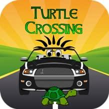 Turtle Crossing v.2