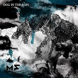 Dog in the Rain [Explicit]
