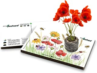 Eco-Postcard   Regalo ecologico con semi di Papavero   Biglietto d'auguri crescita pianta di Papavero