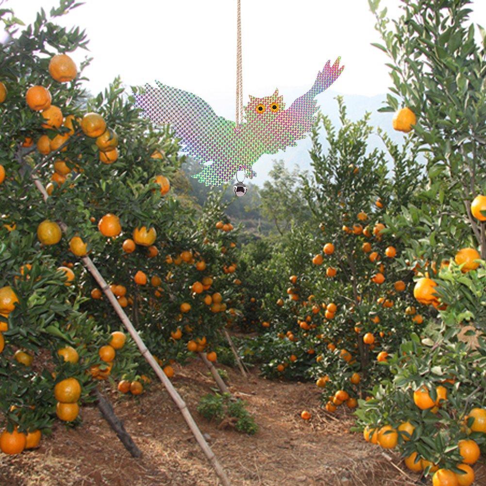 nouvelife – Juego de 2 repelente pájaros espantapájaros pájaros forma de águila reflectante luminoso con el sol Campanilla y inalámbrico apantalladas Suspensión decorativa para vegetales granja jardín: Amazon.es: Jardín