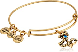 Alex and Ani Brass not Applicable