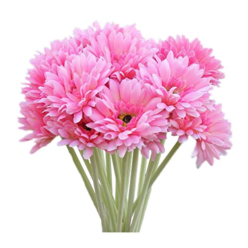 Flores Gerbera Amazon Es