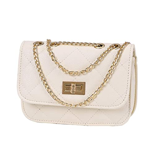 a8d573d3fc HDE Women s Small Crossbody Handbag Purse Bag with Chain Shoulder Strap
