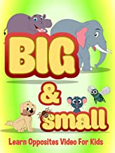 Big and Small - Learn Opposites Video For Kids