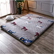 Tatami Floor Mat,Single/Double Thick Warm Tatami Mattress mat,Student Mattress,3 Colors for You to Choose from,C,90 * 200c...