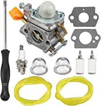 HIPA Carburetor with Tune Up Kit for Homelite UT09510 UT20002 UT20003A UT20004A UT20006 UT20022 UT20023A UT20024 UT20026 UT20042 UT20042A UT20043A UT20044 UT20046 25cc String Trimmer