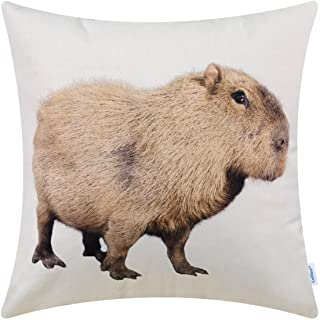 CaliTime Canvas Throw Pillow Cover Shell for Couch Sofa Home Decoration Animals Theme Print 18 X 18 Inches Capybara