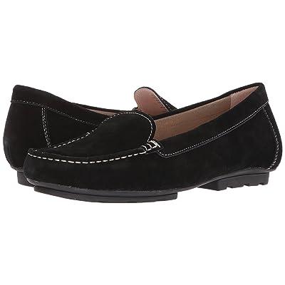 Blondo Dale Waterproof Loafer (Black Suede) Women
