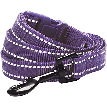 Blueberry Pet Essentials 10 Colors Reflective Classic Solid Color Dog Leashes