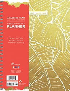 TF Publishing Academic Gold Botanical Palm Leaves 9x11 Daily Weekly Monthly Planner - July 2017-June 2018 Calendar (18-9720A)