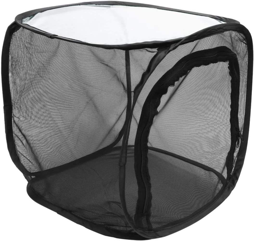 NUOBESTY Insect Cage Manufacturer direct delivery Foldable House Explorer Box Popular products Bug