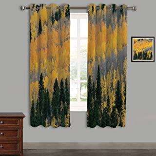 Lovely Children Curtains Drapes,Polyester Curtains Panels,2 Panels,84