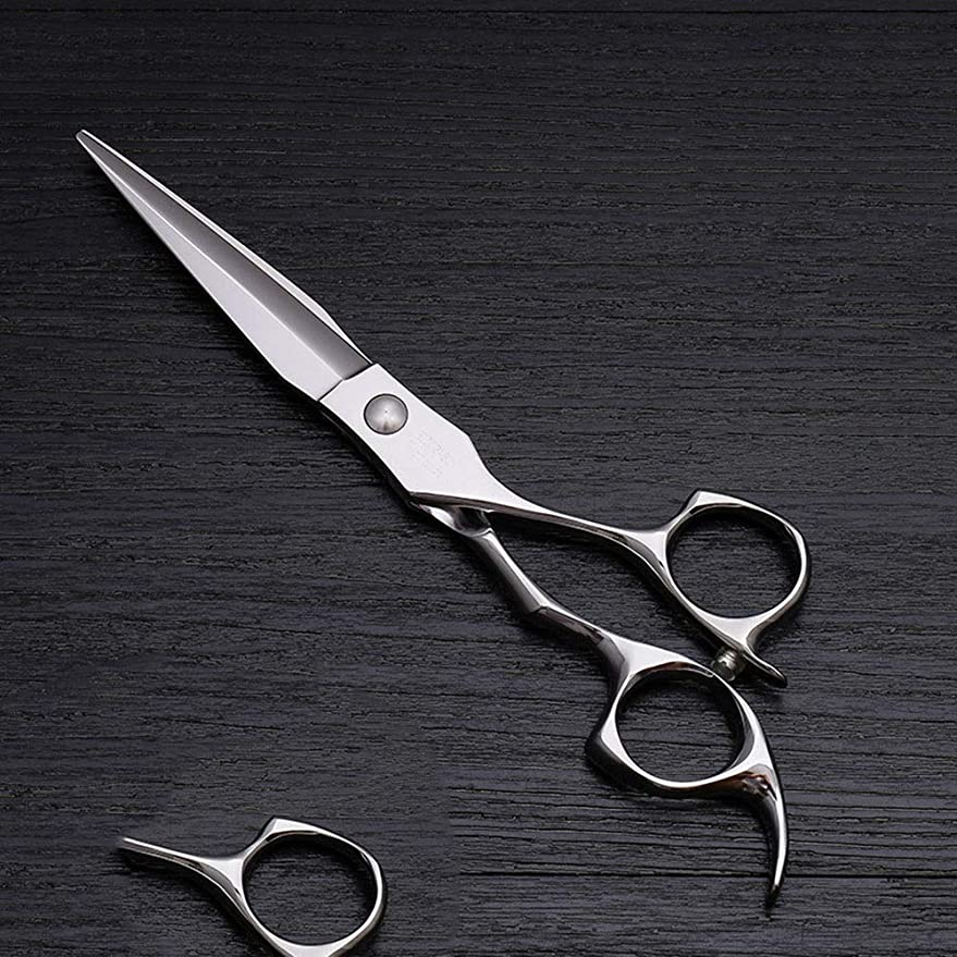 お互い不十分トレーニング6インチハイエンドステンレススチール理髪はさみツール、美容院特別理髪フラットせん断ツール モデリングツール (色 : Silver)