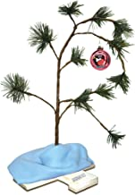 ProductWorks Exclusive 2018 24-Inch Charlie Brown Christmas Tree with Linus`s Blanket Holiday Décor