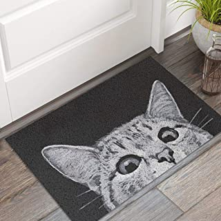 MR FANTASY Cat Front Door Mat Mud Absorbent, Welcome Mat Entrance Door Mat Rug Carpet, Outside Patio/Inside Entry Way, Anti-Slip Bath Rug, Anti-Fatigue Kitchen Mat, Durable & Washable, 18x30