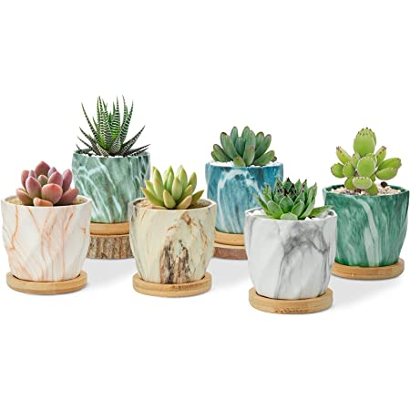 T4U Succulent Pot Ceramic 2.5 Inch Octagon Marbling Small Cactus Pot Set of 6, Geometric Tiny Cute Pot, Colorful Mini Plant Planter with Drainage for Indoor Home Office Woman Desk Decor Mom Gift
