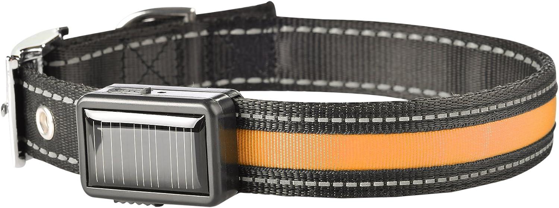 Brite Strike LPCSUorangeLG Rechargeable Lighted Collar, Large, orange