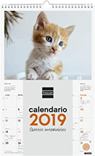 Amazon.es: Finocam - Calendarios de pared / Calendarios ...