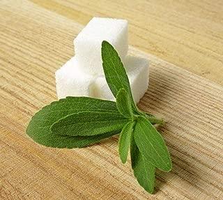 AGROBITS mers Stevia reudiana  EDULCORANTE naturel