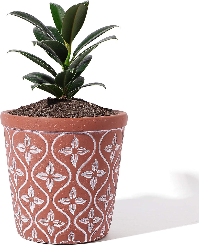 POTEY 201312 Vintage Cement Planter 5 popular Flower outlet 4.7 - Unglaz Pot Inch