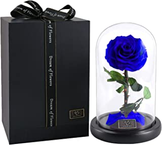 Beauty And The Beast Rose,Enchanted Rose, Glass Dome Black wood Base, Valentine's Party Gifts, Wedding Gifts, Best Gift for Her (Blue)