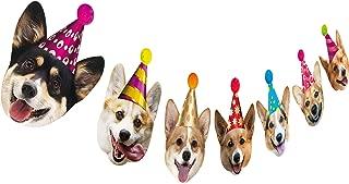 Best first birthday puppy theme Reviews