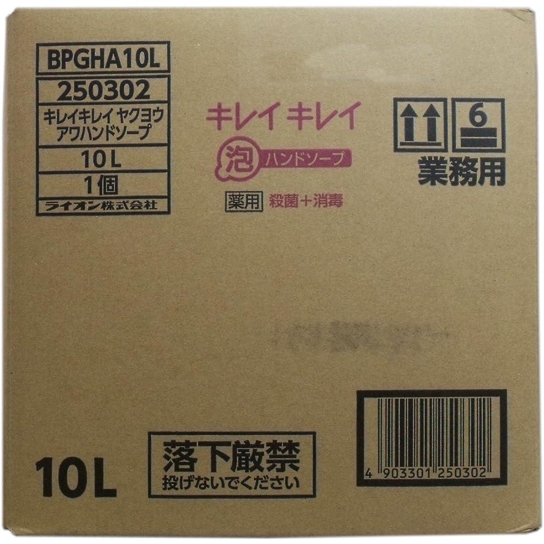 最初カタログ専門知識業務用キレイキレイ 薬用泡ハンドソープ 10L×10個セット
