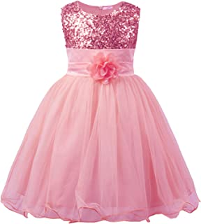 JerrisApparel Little Girls' Sequin Mesh Flower Ball Gown Party Dress Tulle Prom
