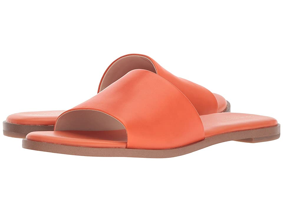 Cole Haan Anica Slide Sandal (Koi Leather) Women