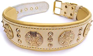 Bestia Maximus Genuine Leather Dog Collar, Large Breeds, Cane Corso, Rottweiler, Boxer, Bully, Bullmastiff, 100% Leather, Studded, M- XXL Size, 2.5 inch Wide. Padded. White & Gold.