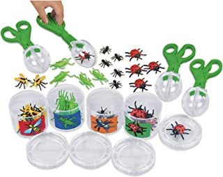 scoop a bug sorting kit