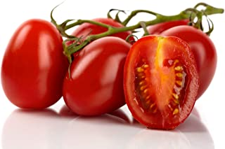 50 Roma Tomato Seeds Lycopersicon Lycopersicum by RDR Seeds