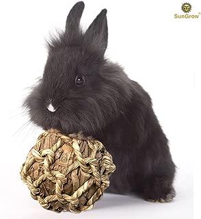 SunGrow Banana Leaf Balls, Chew Toy to Trim Their Teeth, Improve Dental Health, Keep Bunny, Guinea Pig, Kitten Healthy, Happy, and Away from Boredom