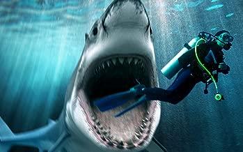 Shark Attacking Scuba Diver Edible Icing Image for 1/4 sheet cake