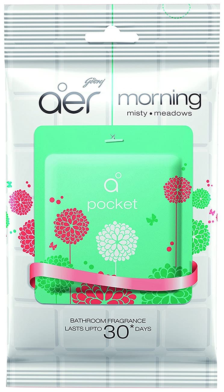 母性科学的うまくやる()Godrej AERポケットバスルームフレグランス?–?10?g warm Blush Air Freshener Room Fragrance