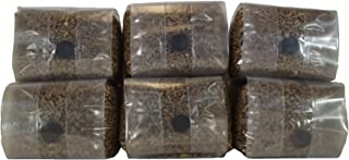 Sterilized Rye Berry Mushroom Substrate Grow Bags with Self Healing Injection Port (6 Pack)