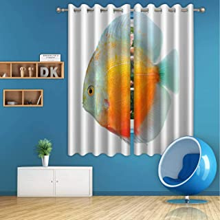 ALUONI Discus Digital Art Print Polyester Window Curtains,179738 for Living Room,72 in Wide x 63 in high
