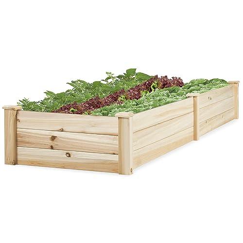 Vegetable Planter Bo: Amazon.com on